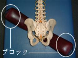 骨盤矯正1.jpg